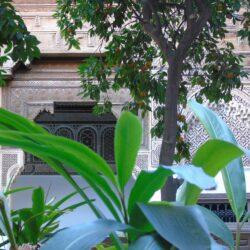 Marrakech: cosa fare in questa città così magica!