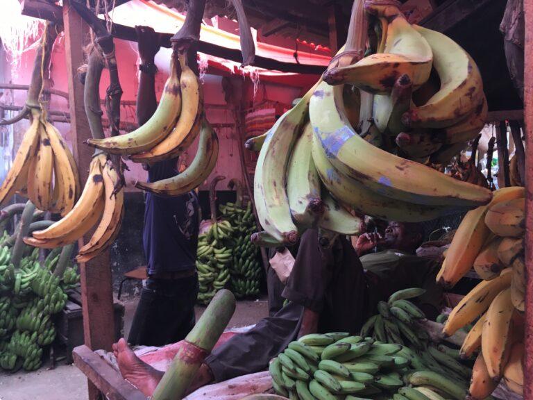 Zanzibar: storia e cucina dell'isola delle spezie