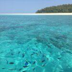Atollo di Mnemba: escursione da Zanzibar